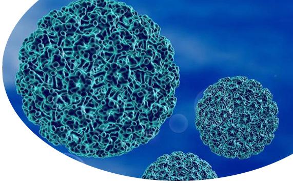Genital Siğil ve HPV Enfeksiyonu